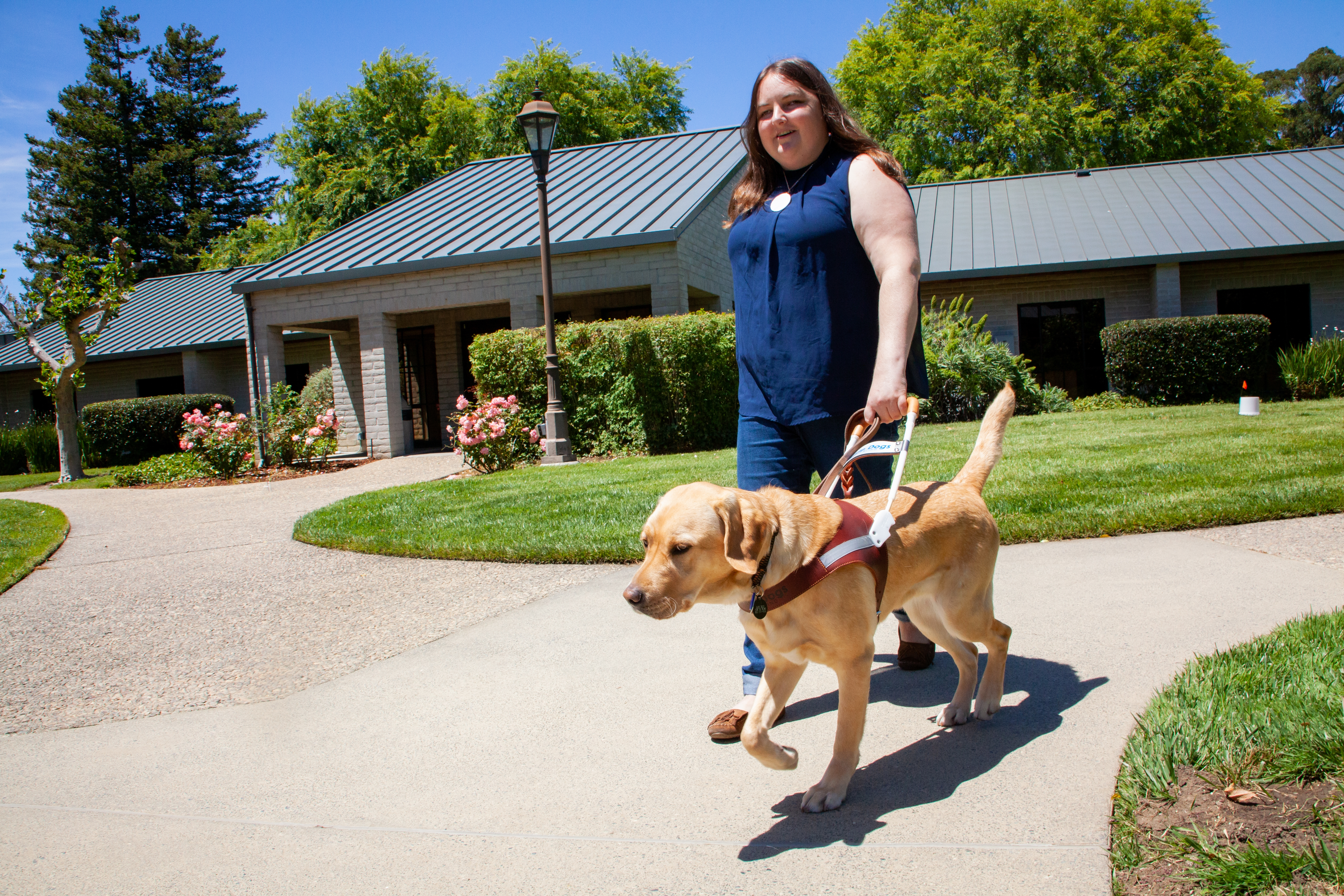 Claire and yellow Lab guide dog Tulane walk through the CA campus of Guide Dogs for the Blind on a bright sunny day.