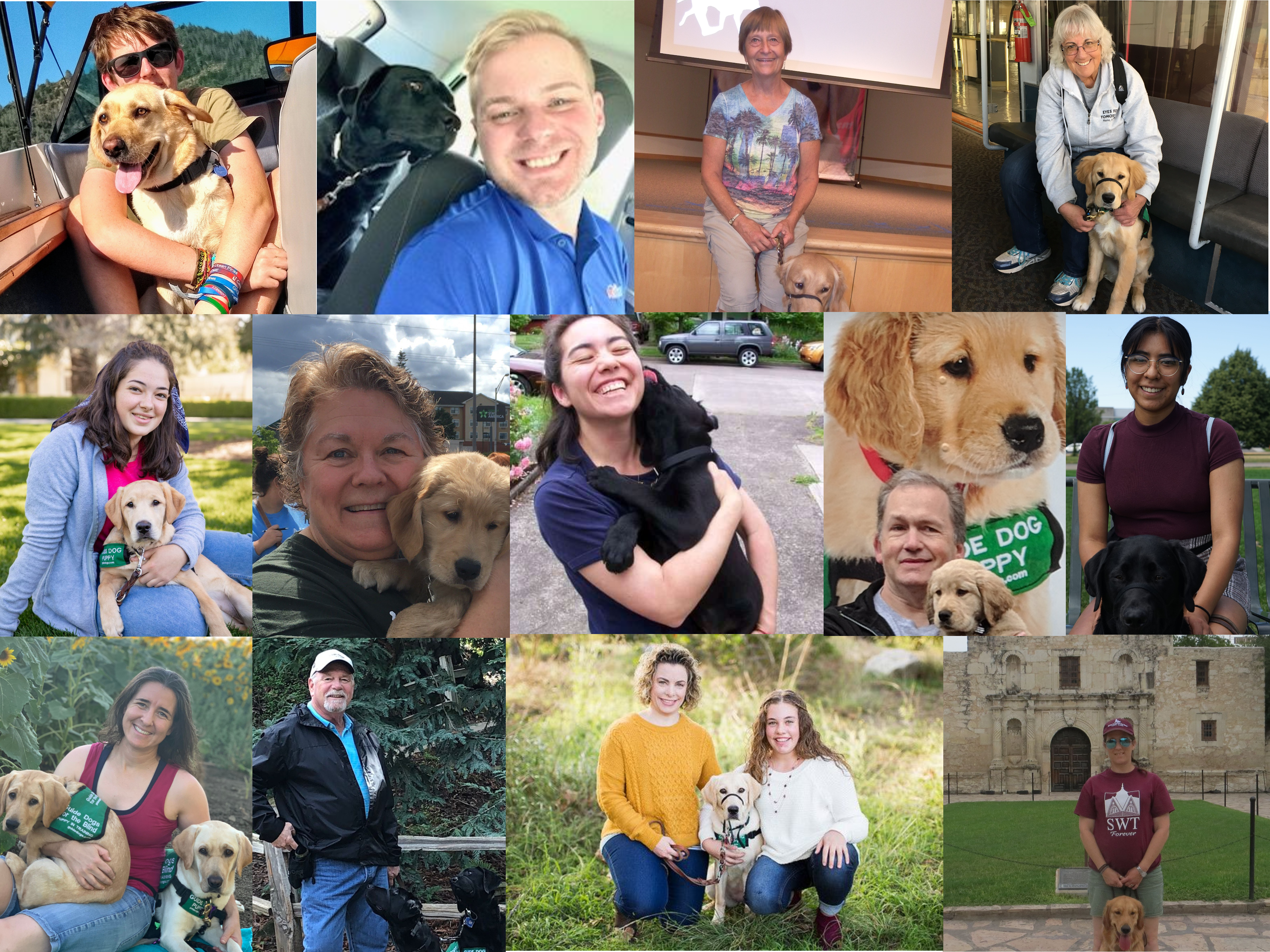 Photo collage of 13 volunteer puppy raisers and leaders who are serving on the Raiser Appreciation Division (RAD) Committee