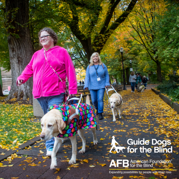 GDB grads walk through a wooded park on a fall day. The GDB logo and the American Foundation for the Blind logo appear on the bottom right corner of the image.