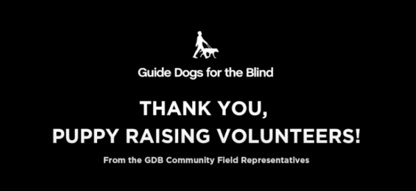 "A screen shot of the opening slide of the featured video that reads ""Thank you, Puppy Raising Volunteers! From the GDB Community Field Representatives"""