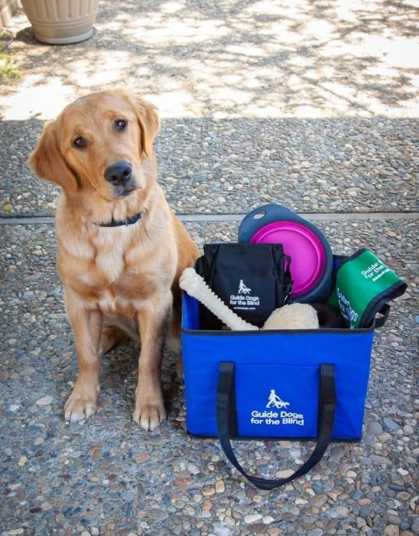A Golden Lab cross sits beside a blue tote full of GDB merchandise.