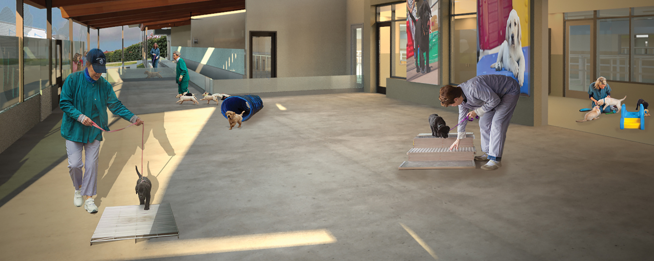 An architect's rendering of the outdoor puppy socialization area of the Puppy Center