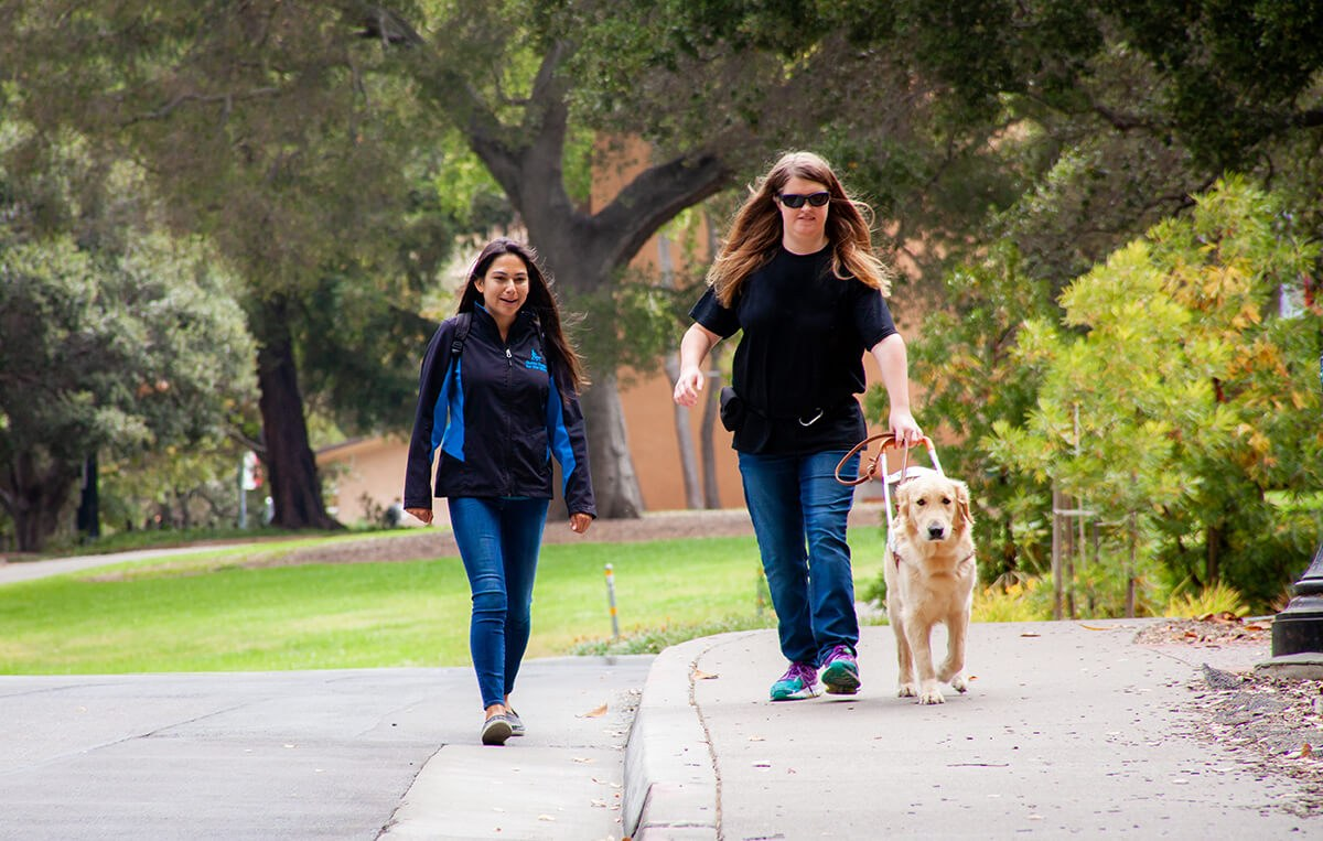 A guide dog mobility instructor walking with a client and her Golden guide Dog during a training session.