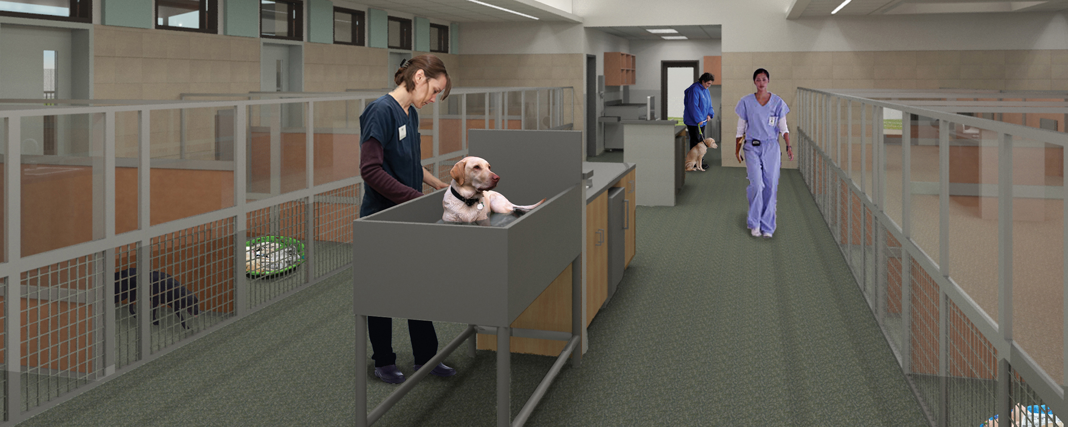 An architect's rendering of the new Puppy Center nursery