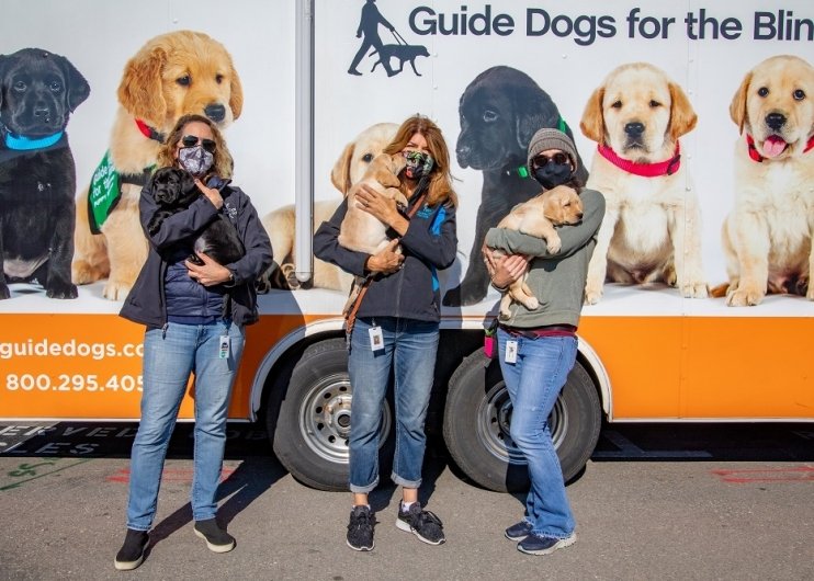 Employees hold dogs by puppy truck